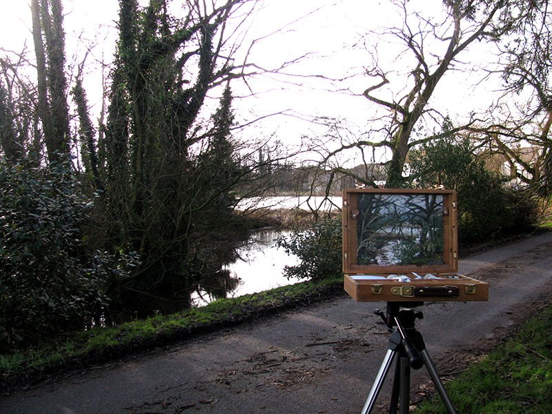 Wrinehill Mill Lake in Situ
