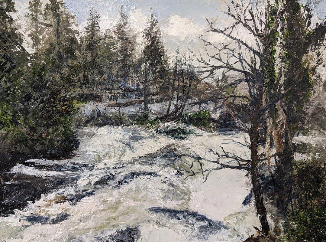 "Betws-y-Coed: the River Llugwy in full Spate -Oil on canvas FRAMED 16""x12"" £200"