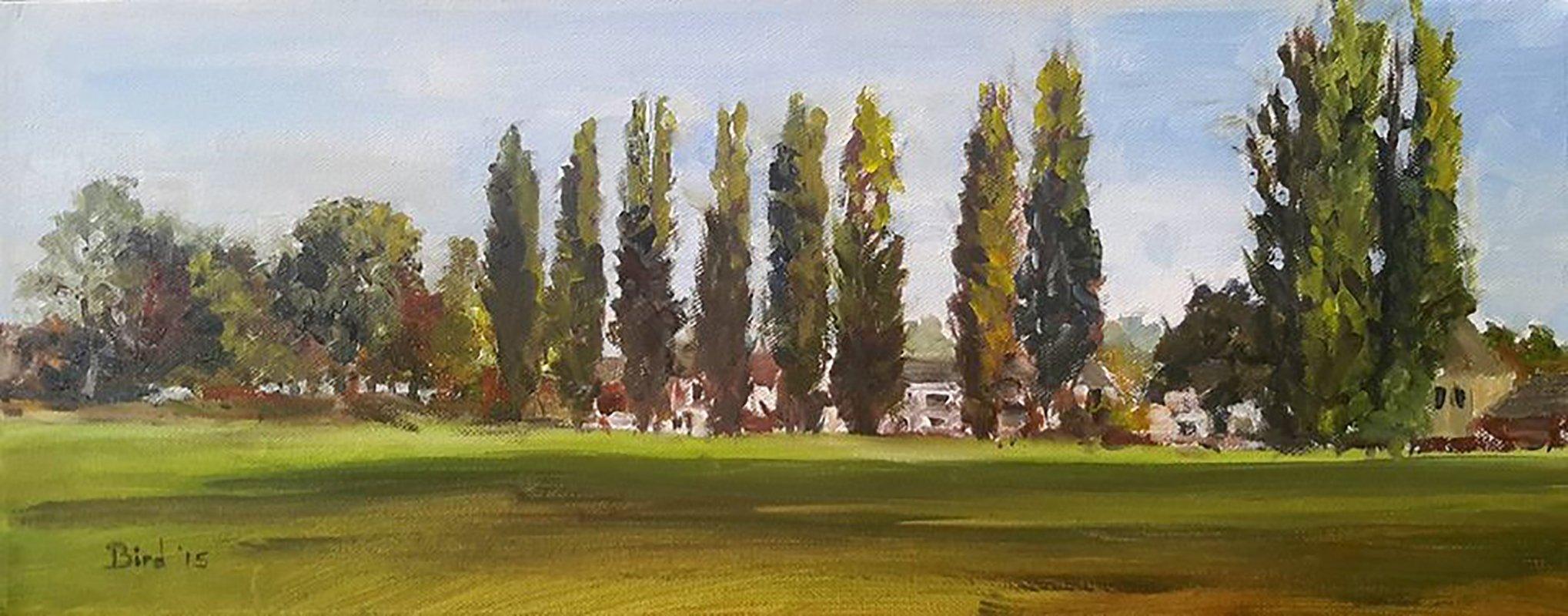 Poplars on the Barony, Nantwich.